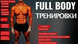 Фулбоди тренировка: программа для девушек и мужчин