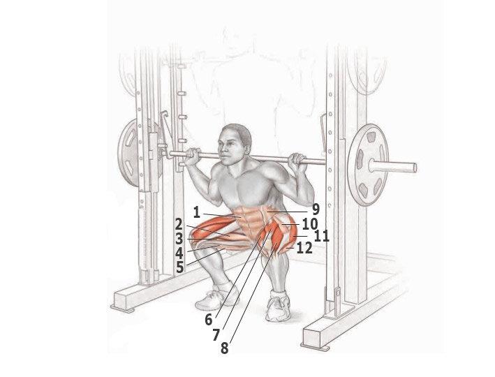 Приседания в кроссовере: присед с нижним и верхним блоком - мышцы, техника блоком