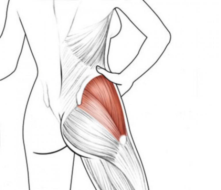 Как накачать боковые мышцы ягодиц: обзор самых эффективных упражнений