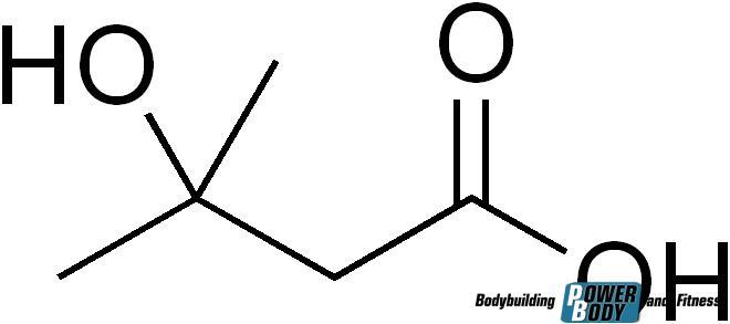 Гидроксиметилбутират или hmb