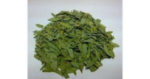 Листья сенны для похудения - инструкция по применению, отзывы
