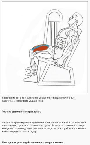 Как правильно делать разгибание ног сидя на тренажере