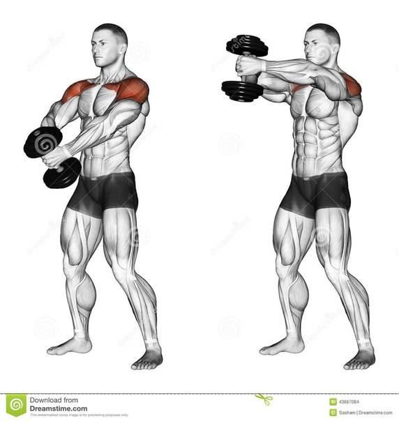 Как накачать плечи: 7 лучших программ тренировок дельт в тренажерном зале