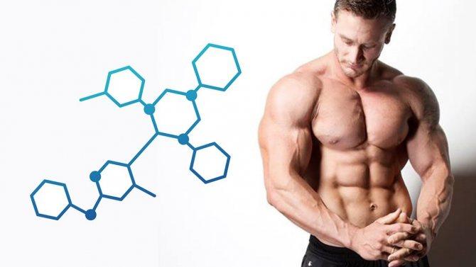 Народные средства для повышения уровня тестостерона