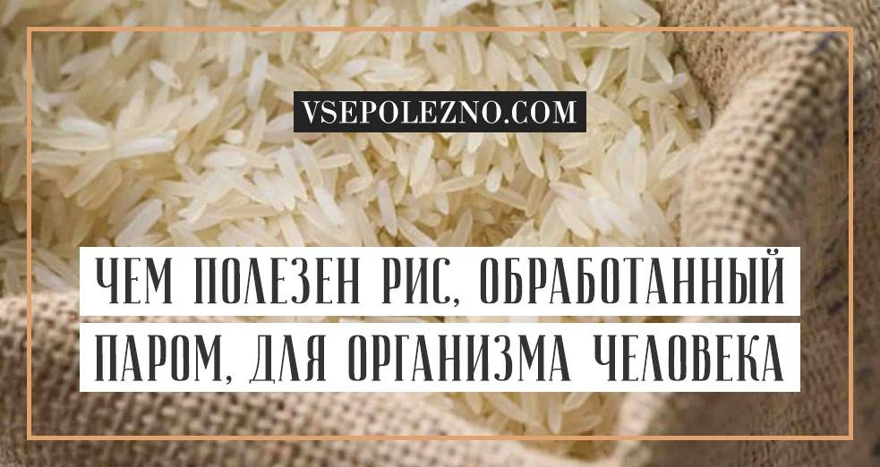 Рис: полезные свойства и возможный вред