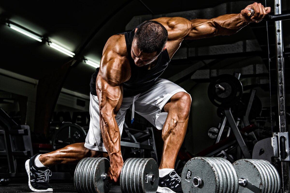 Какая минимальная нагрузка дает эффект на рост мышц? – зожник  какая минимальная нагрузка дает эффект на рост мышц? – зожник