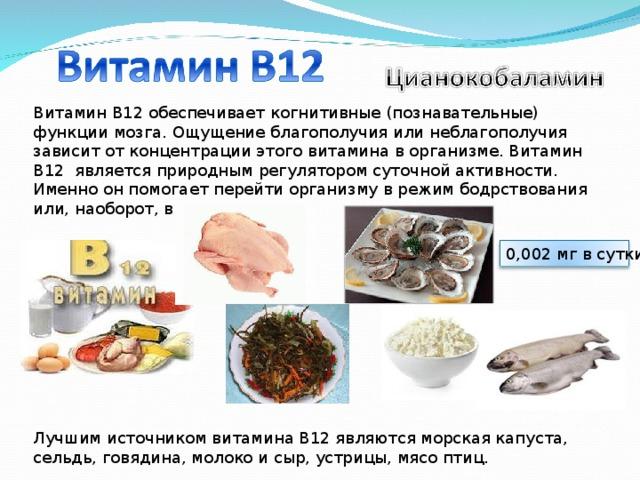 Витамин b12 – в чем содержится и влияние на здоровье| пути к здоровью