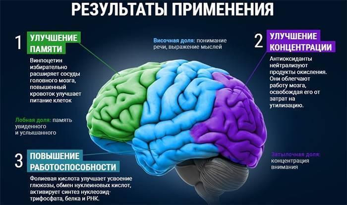 Защитите свой мозг от стресса