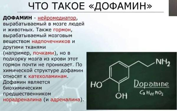 Гормон дофамин (допомин): что такое, где содержится и на что влияет