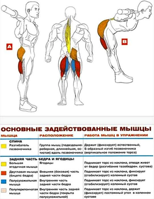 Тренинг для быстрого преображения: упражнения для ног и ягодиц