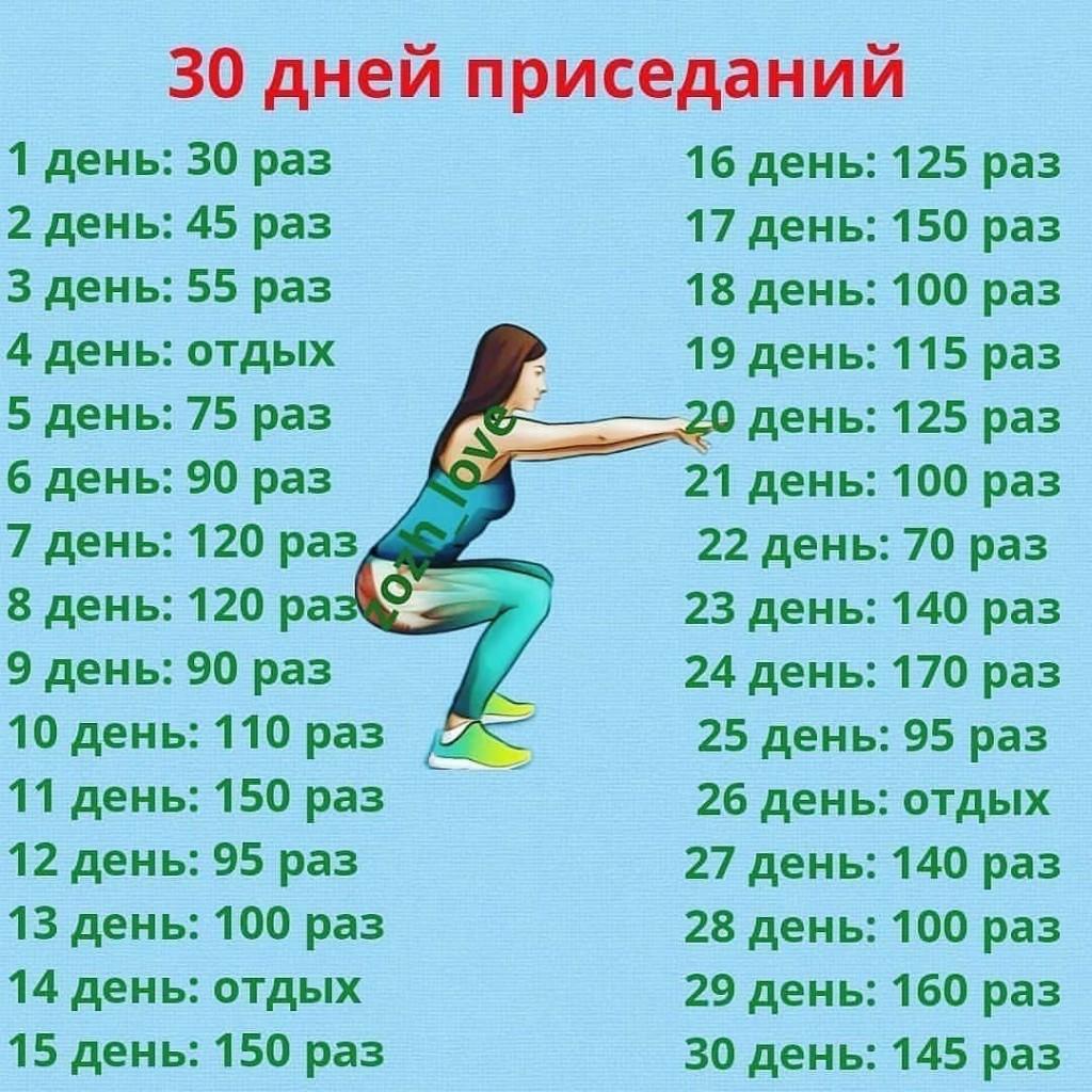 Схема приседаний на 30 дней для девушек: программа тренировок, комплекс упражнений для похудения