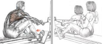 """Описание упражнения """"тяга верхнего блока"""": техника, ошибки, варианты и рекомендации специалистов"""