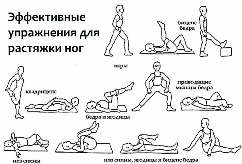 Разминка перед тренировкой в тренажерном зале для мужчин и девушек