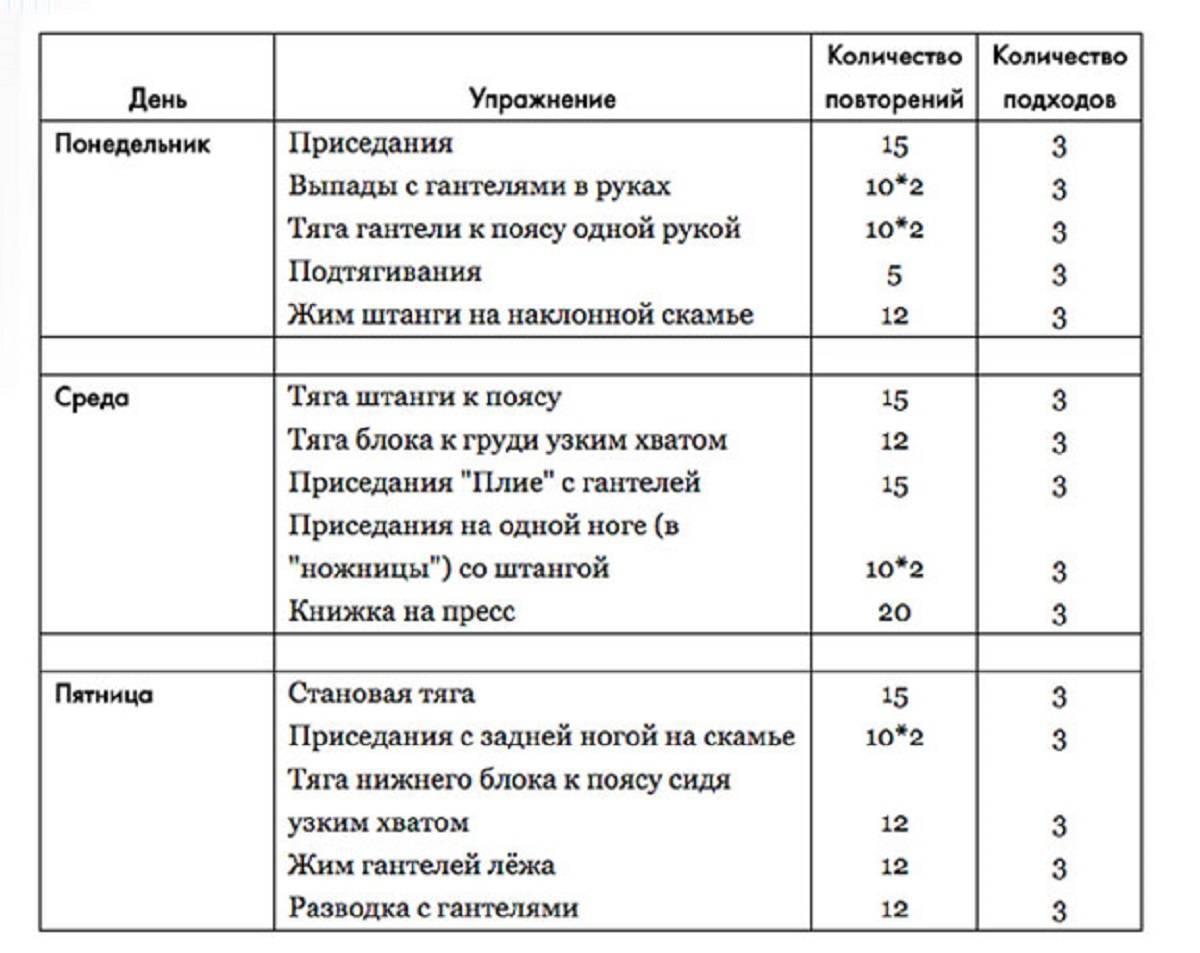 Упражнения в тренажерном зале для новичков - программа тренировок - stevsky.ru - обзоры смартфонов, игры на андроид и на пк