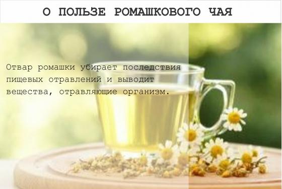 10новых фактов озеленом чае