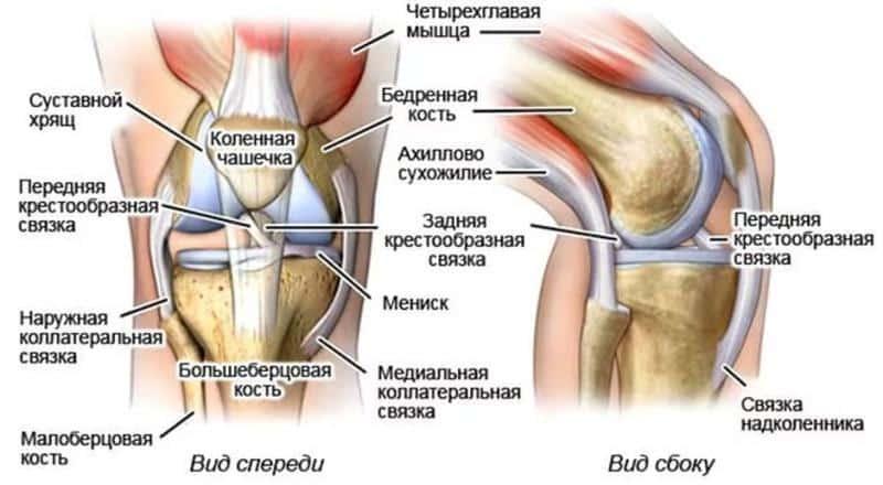 Как укрепить сухожилия и связки: полезные упражнения и питание