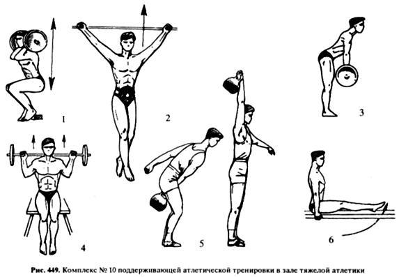 Атлетическая гимнастика: виды, цели, программы | здоровье и все для него