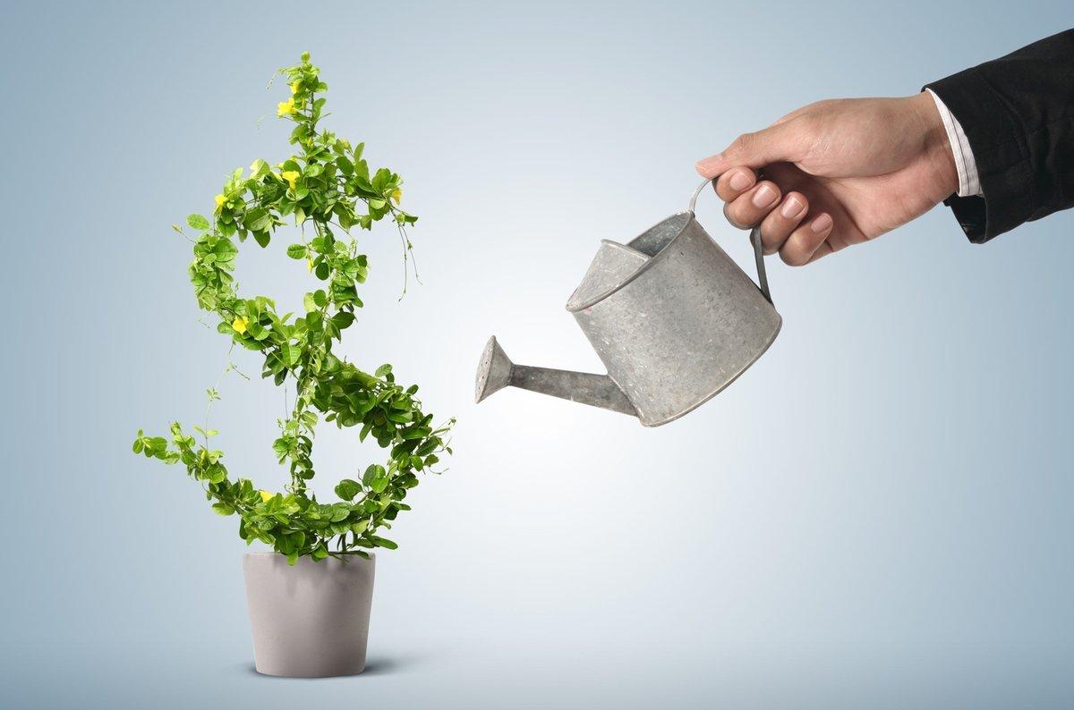 Инвестиции в себя - выгодные инвестиции