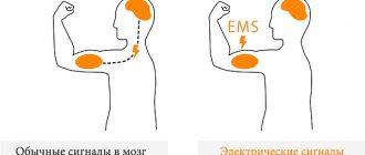 Врач-травматолог про ems-тренировки, реабилитацию и укрепление суставов у возрастной группы