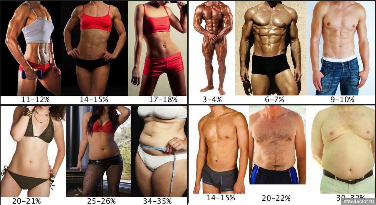 Процент жира в организме у женщин и мужчин - как узнать?