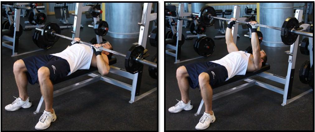 Жим штанги лёжа узким хватом на трицепс: какие мышцы работают, техника выполнения, чем заменить