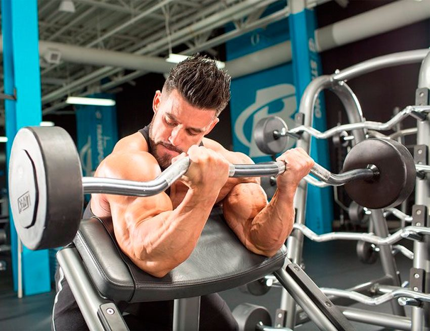 Самые эффективные методы построения мышц – зожник  самые эффективные методы построения мышц – зожник