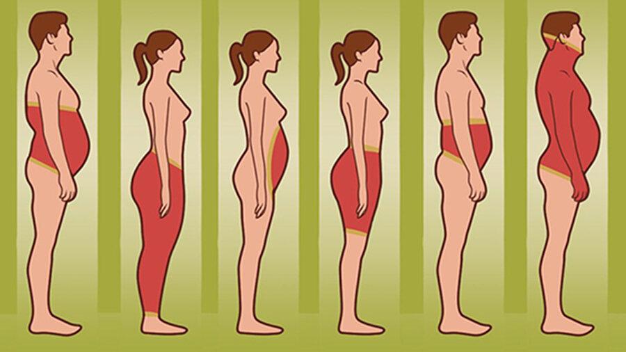 Висцеральный жир: что это такое, признаки, причины, вред. как убрать висцеральный жир на животе у женщины и мужчины