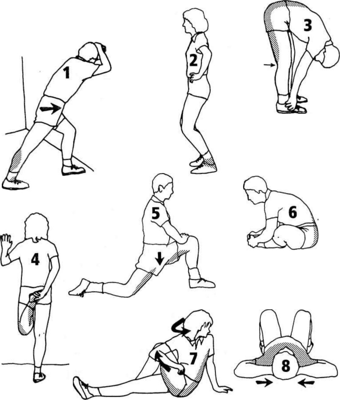Растяжка после силовой тренировки на все группы мышц