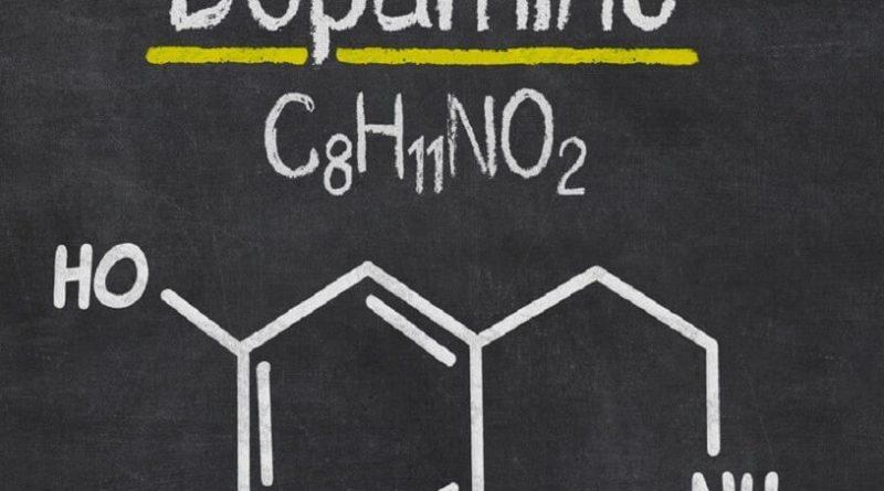 Дофаминовое голодание: к чему это может привести — тестостерон