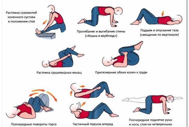 Эффективные упражнения для растяжки мышц спины   rulebody.ru — правила тела