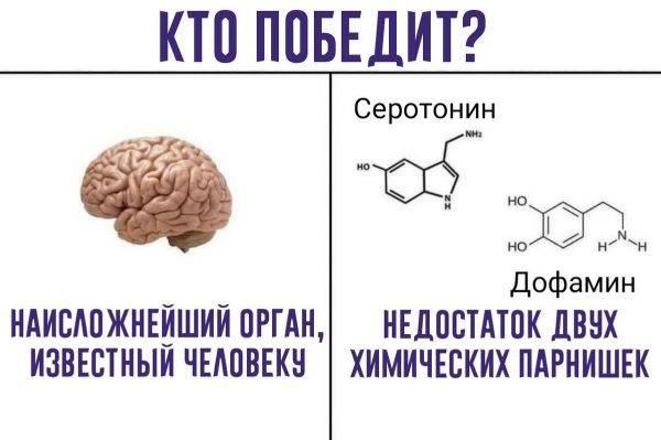 Основное назначение дофамина