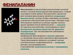 В каких продуктах содержится аминокислота тирозин, полезные свойства