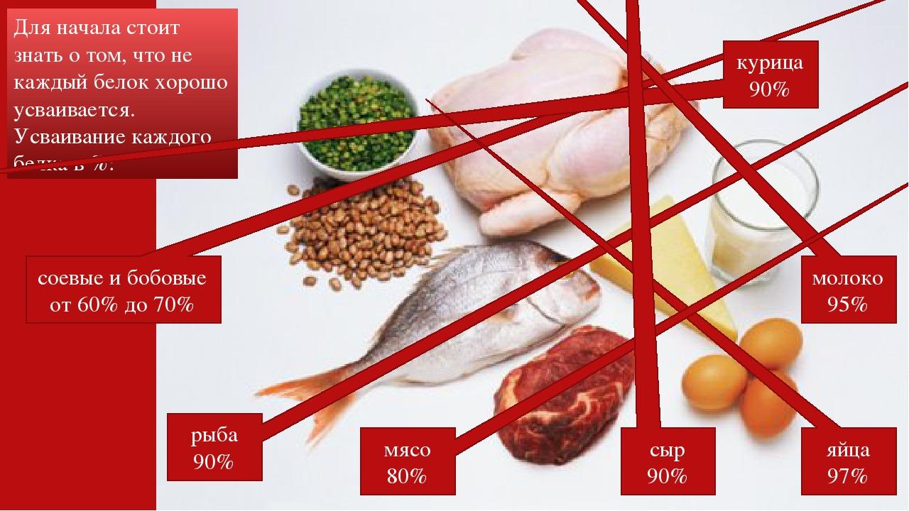 Сколько белка усваивается за 1 прием пищи – зожник  сколько белка усваивается за 1 прием пищи – зожник