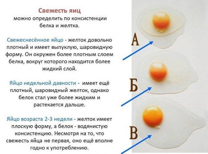 Как отделить желток от белка. как правильно отделить белок от желтка простой способ отделить желток от белка