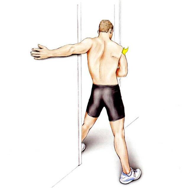 Тренировка плеч и рук в один день, программа тренировки, упражнения