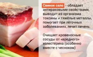 Польза и вред свиного сала для здоровья человека, его состав и применение для лечения и в кулинарии