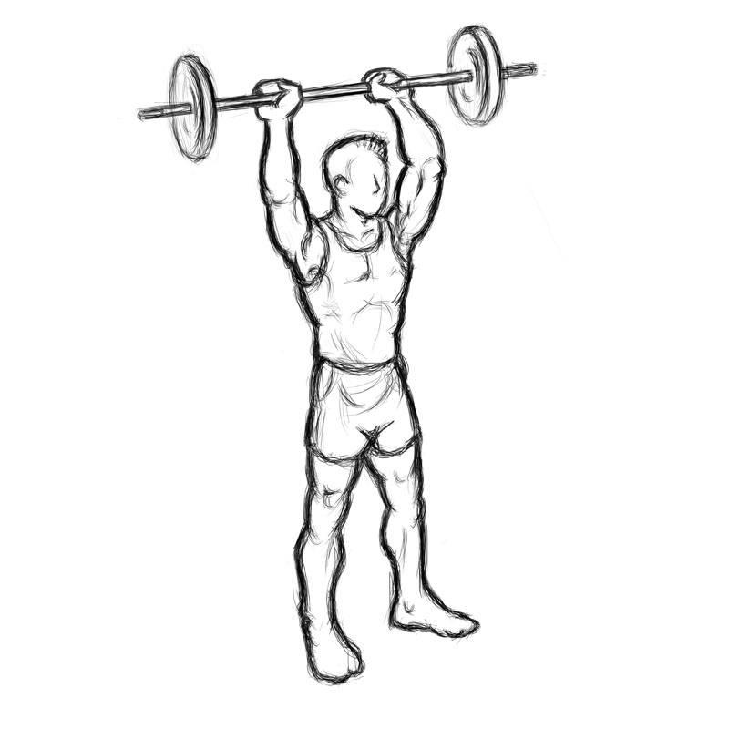 Жим штанги стоя с груди: особенности упражнения и техника выполнения | rulebody.ru — правила тела