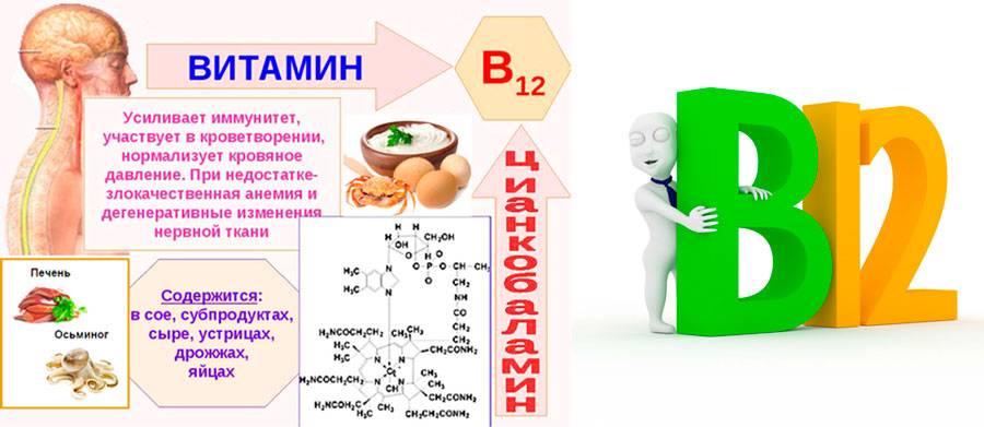 Фолиевая кислота для похудения, а также применение в бодибилдинге и других видах спорта