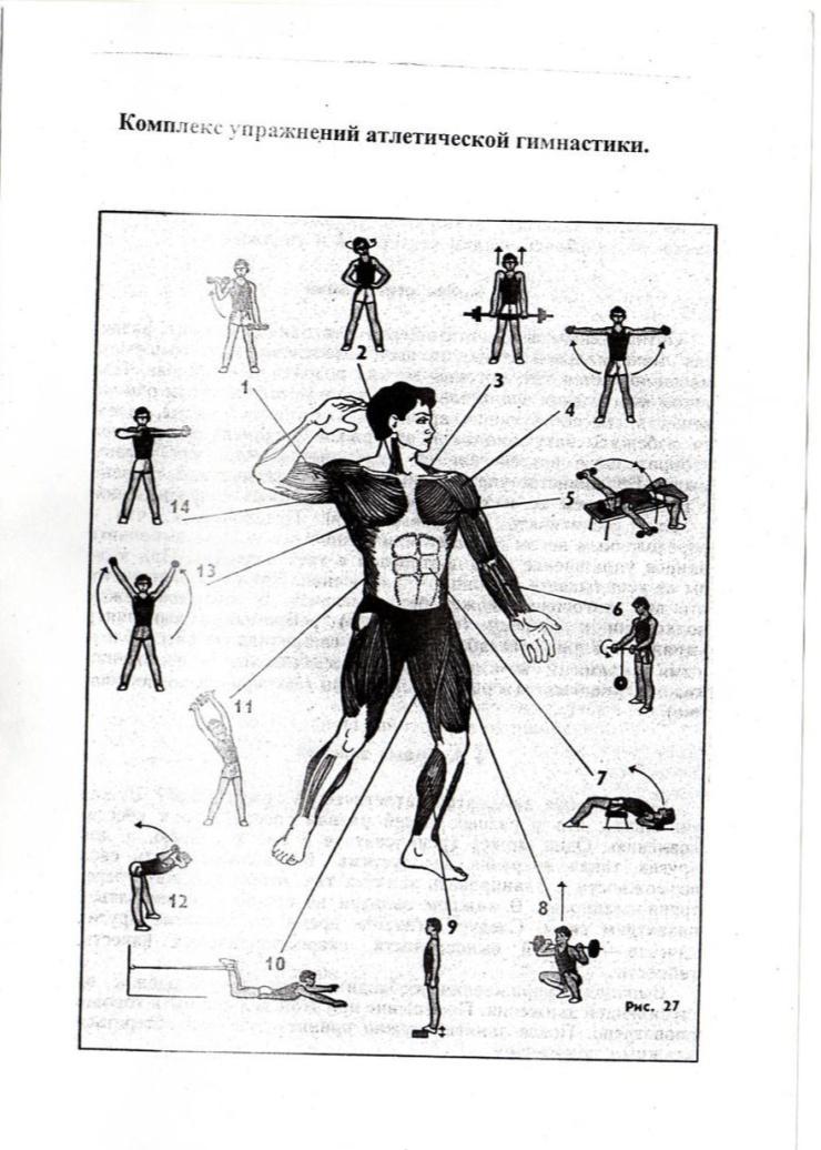 Гимнастика: виды, упражнения, спортивная, художественная, в школе, элементы, как заниматься, правила, оздоровительные виды