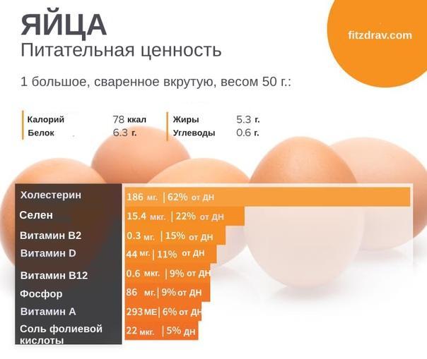 Калорийность 1 шт. белка вареного яйца: степень готовки яйца, количество калорий, пищевая ценность, состав и польза продукта - tony.ru