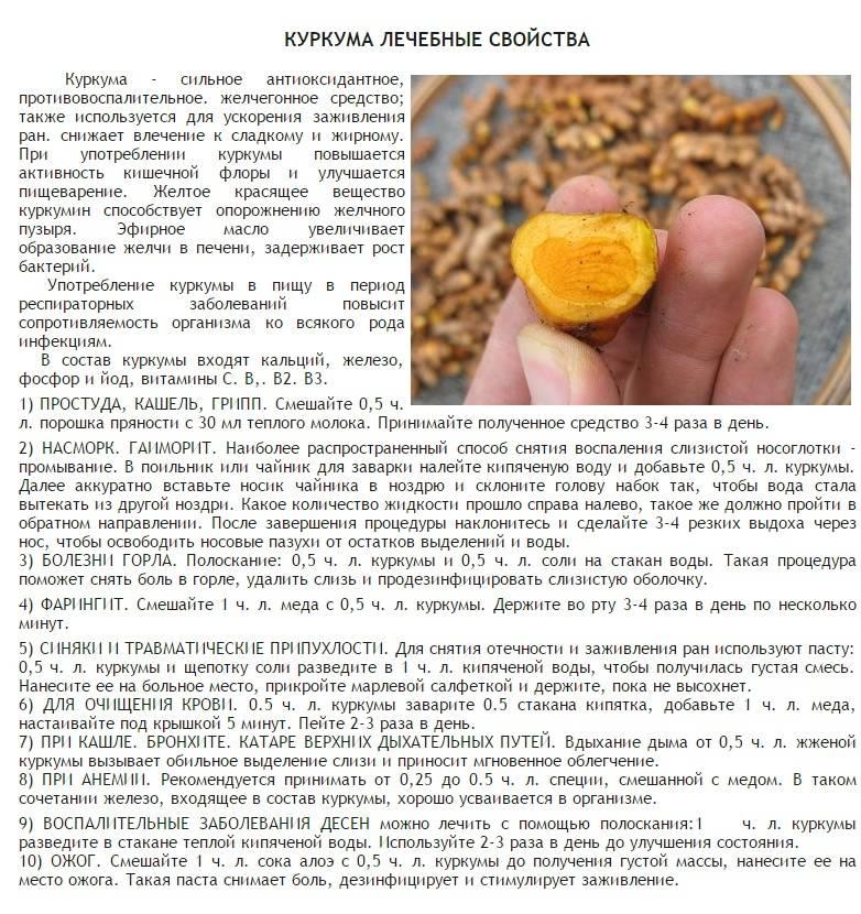 Куркума для похудения - эффекты и правила употребления | fitburg.ru