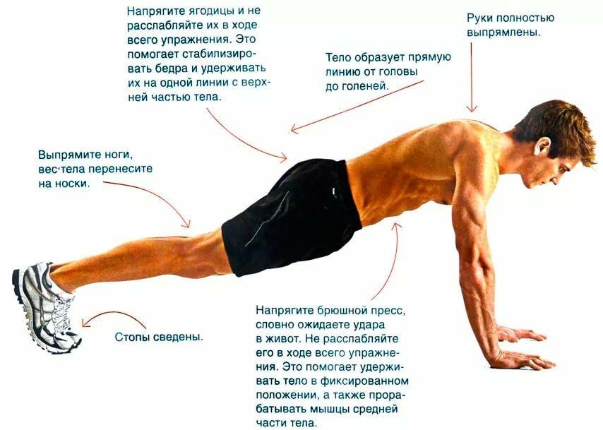 Отжимания от пола для набора мышечной массы: программа тренировок
