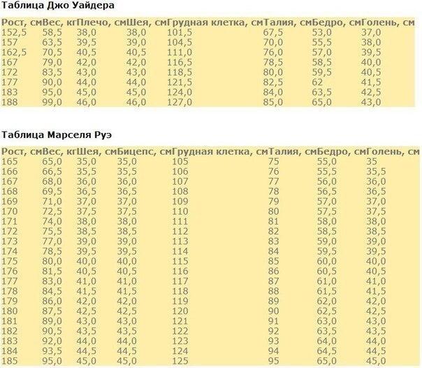 Пропорции тела в бодибилдинге