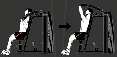 Тренировка плеч в тренажерном зале