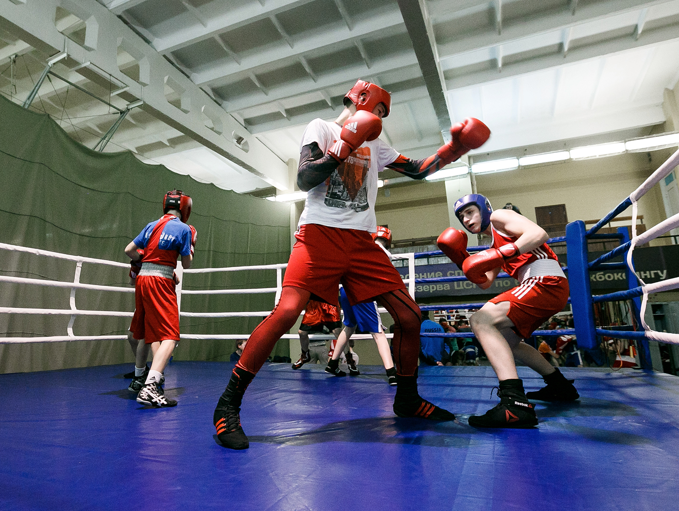 Спортивное питание при занятиях боксом