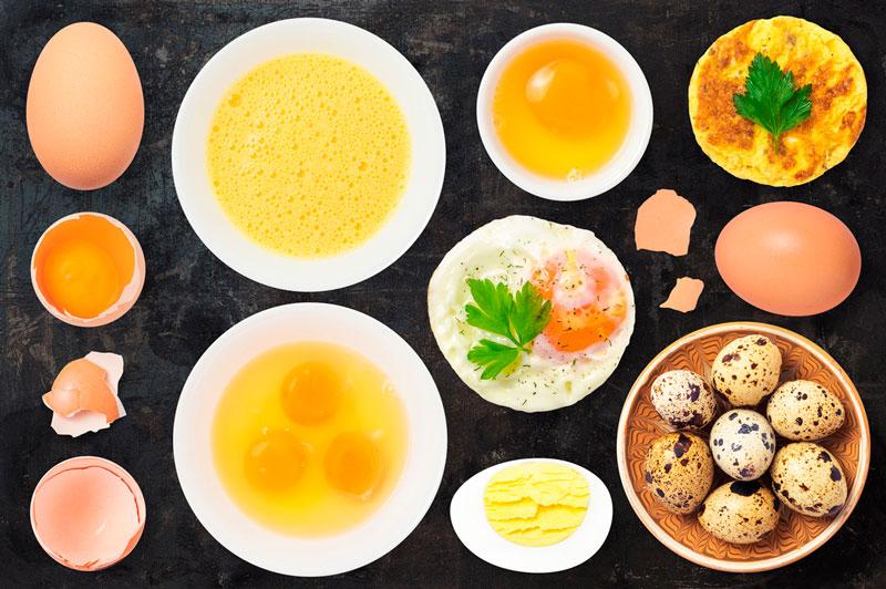 1 яйцо куриное химический состав. куриные яйца: польза и вред