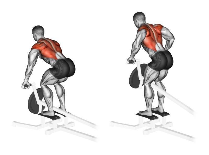 Тяга т-грифа в наклоне к груди и к поясу: техника выполнения упражнения