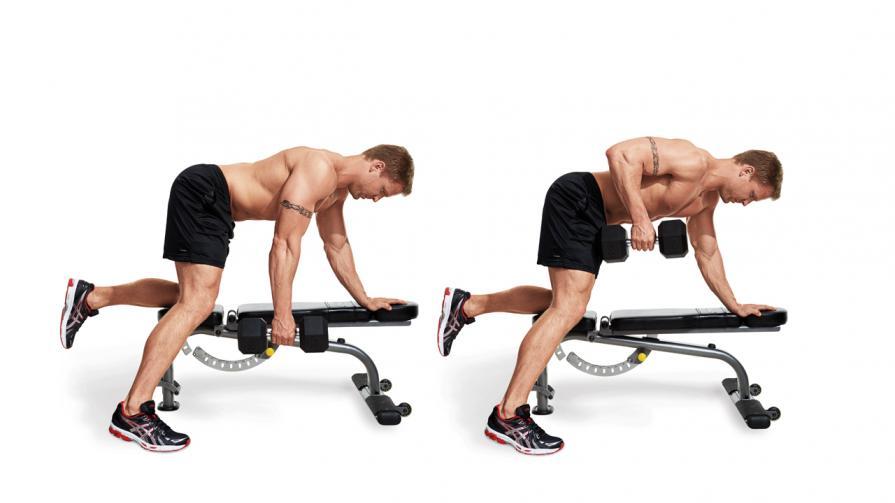 Базовые упражнения на мышцы спины с гантелями