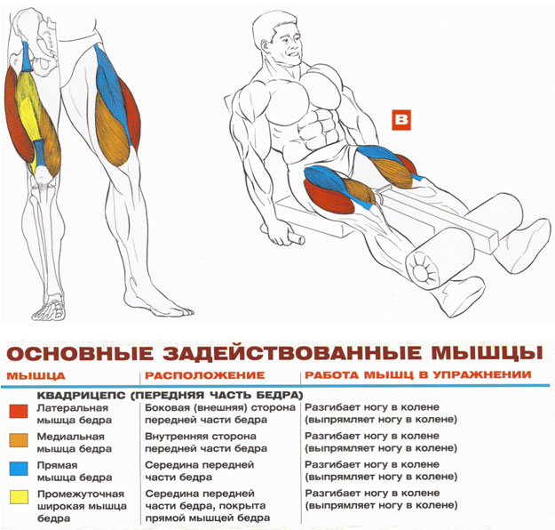 Топ-15 упражнений для ног и ягодиц со штангой + планы занятий (для мужчин и женщин)