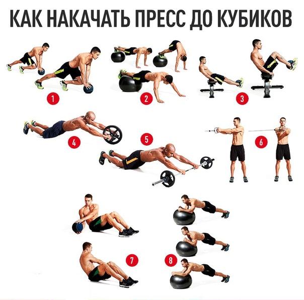 Как накачать пресс до кубиков —схема прокачки и лучшие упражнения